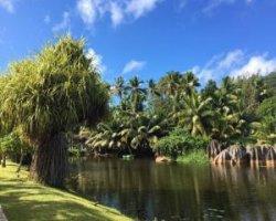 Поиск книг в интернете о Коморских островах